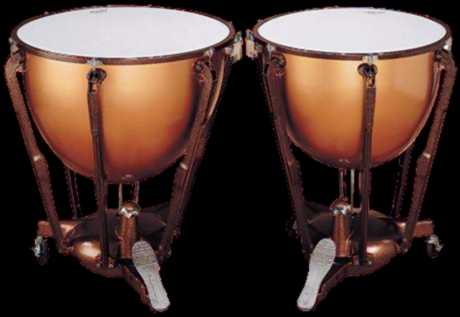 Timbales https://www.stringsandhorns.com